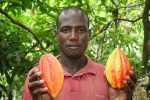 Kakaobauer: Deutsche mögen Fairtrade-Produkte (Foto: GEPA)