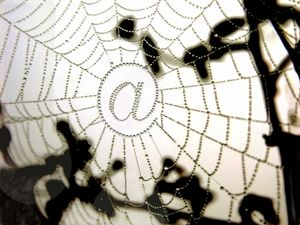 @-Spinnennetz: Internet-Provider täuschen User (Foto: pixelio.de/Pepsprog)