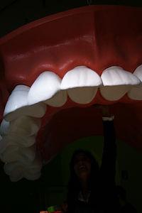 Zähne: sensorische Überwachung denkbar ( Foto: flickr.com/Petra B. Fritz)
