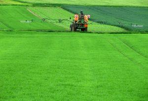 Austragen von Pestiziden: Hormone werden beeinflusst (Foto: pixelio.de, Sturm)