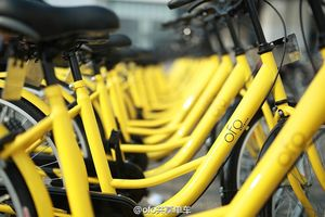 Bike-Sharing: Vandalismus wird oft im Web publik gemacht (Foto: ofo.so)