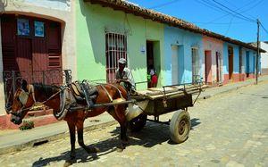Kubaner mit Pferd: Kuba setzt auf Reformen (Foto: flickr.com/Bud Ellison)