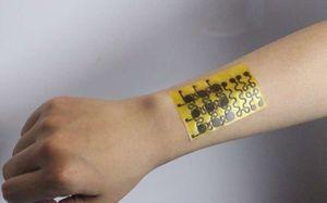 E-Haut: Neues Modell punktet mit Vorteilen (Foto: colorado.edu)