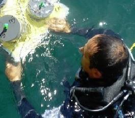 Wissenschaftler bei der Analyse von Meeresströmungen (Foto: ismar.cnr.it)