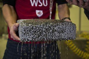 Regenwasser rinnt dank des neuen Verfahrens durch porösen Beton (Foto: wsu.edu)