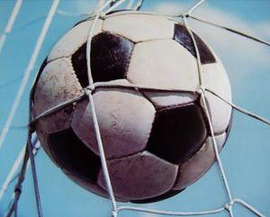 Ball im Netz: Viele Fans nutzen Tippspiele (Foto: pixelio.de, Karin Schmidt)
