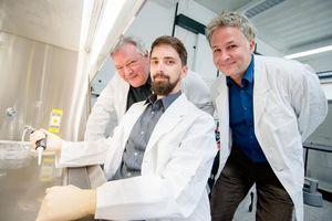 A. Faissner, M. Jarocki und R. Weberskirch (von links) (Foto: RUB, Marquard)