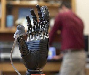 Prothesenhaut wird an den Fingerspitzen getragen (Foto: hopkinsmedicine.org)