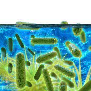 Legionellen im Kühlturm (© Shutterstock)