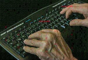 Hacker bei der Arbeit: Firmen oft unvorbereitet (Foto: Bernd Kasper, pixelio.de)