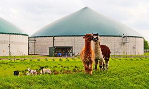 Biogasanlage: Überschussstrom wird zu Methan (Foto: Uschi Dreiucker/pixelio.de)