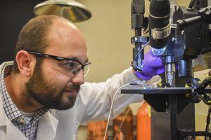 Forscher Arda Gozen bei der Prüfung eines gedruckten Sensors (Foto: wsu.edu)