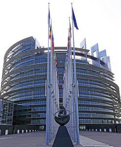 EU-Parlament: Wähler zeigen Europa Vertrauen (Foto: pixabay.com, hpgruesen)