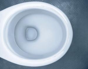 Toilette: makellos sauber auch ohne Wasserspülung (Foto: spotlessmaterials.com)