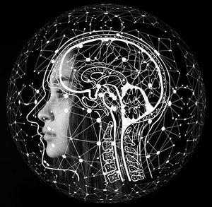Gehirn: Forscher unterbinden Bildung von Plaques (Foto: pixabay.com, geralt)