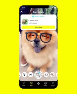"""Dog Scanner"": Anwendung identifiziert Hunderasse (Foto: snap.com)"