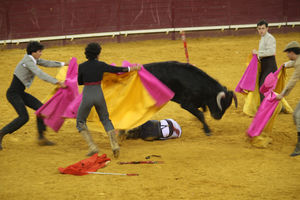 Children and bullfighting