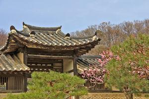 Die reiche und lange Kulturgeschichte Koreas spiegelt sich in zahlreichen traditionellen Gebäuden wider.